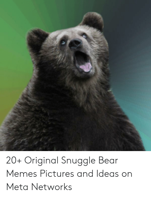 snuggle bear: 20+ Original Snuggle Bear Memes Pictures and Ideas on Meta Networks