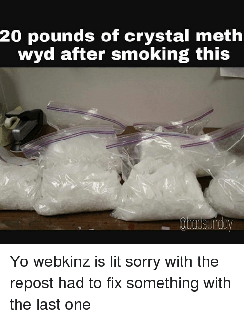 Mething: 20 pounds of crystal meth  wyd after smoking this Yo webkinz is lit sorry with the repost had to fix something with the last one