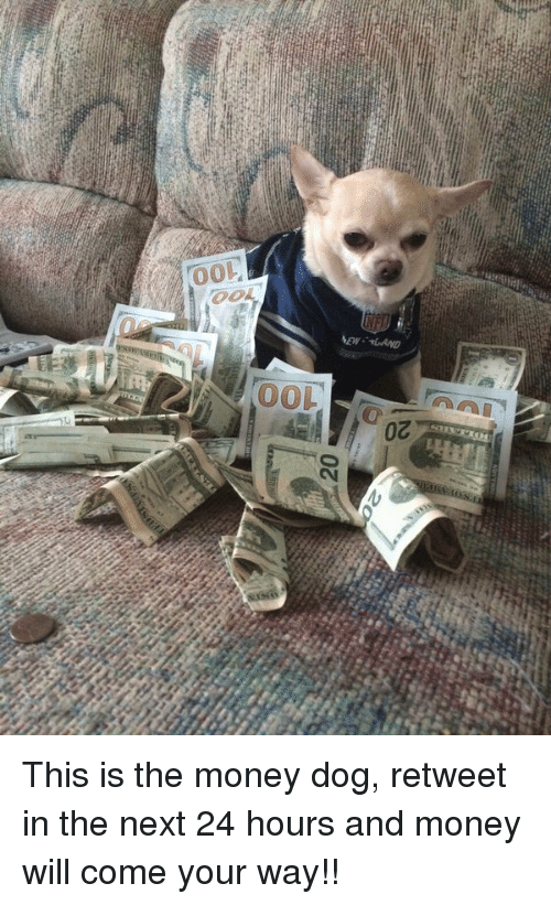 Hood, Toe, and 24 Hours: 20  Toe  100  20 This is the money dog, retweet in the next 24 hours and money will come your way!!