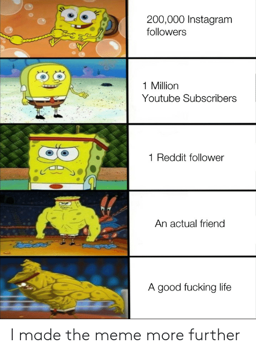 follower: 200,000 Instagram  followers  1 Million  Youtube Subscribers  Reddit follower  An actual friend  A good fucking life I made the meme more further