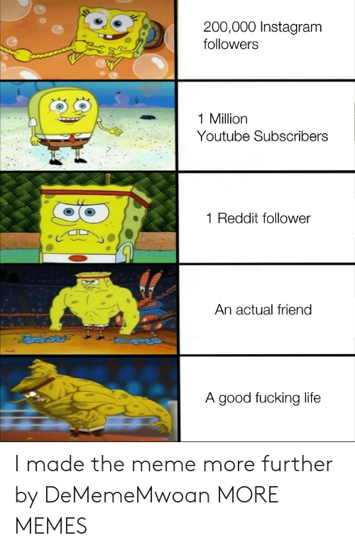 follower: 200,000 Instagram  followers  1 Million  Youtube Subscribers  Reddit follower  An actual friend  A good fucking life I made the meme more further by DeMemeMwoan MORE MEMES