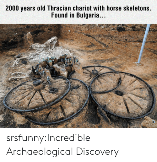 skeletons: 2000 years old Thracian chariot with horse skeletons.  Found in Bulgaria.. srsfunny:Incredible Archaeological Discovery