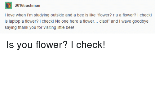"Thank You, Flower, and Laptop: 2016trashman  tudying outside and a bee is like tower? ru a flower?  Ilove when I'm  outs  e ""flower? r u a flower? I check!  is laptop a flower? i checkl No one here a flower... ciaol  saying thank you for visiting little bee  and I wave goodbye Is you flower? I check!"