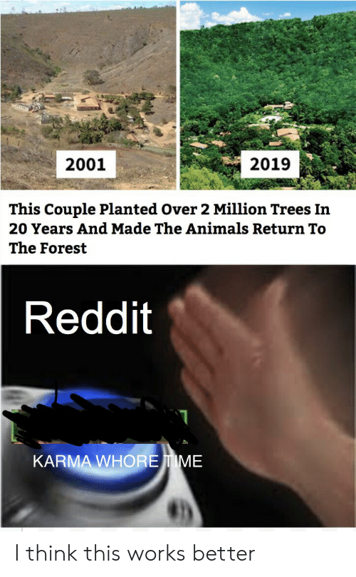 Animals, Reddit, and Karma: 2019  2001  This Couple Planted Over 2 Million Trees In  20 Years And Made The Animals Return To  The Forest  Reddit  KARMA WHOREIME I think this works better