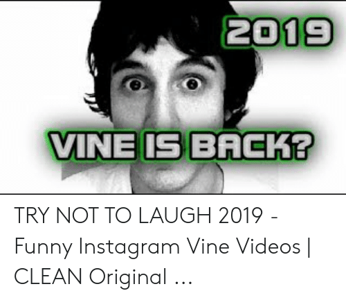 Try Not To Laugh Memes Clean: 2019  VINE IS BACK? TRY NOT TO LAUGH 2019 - Funny Instagram Vine Videos | CLEAN Original ...