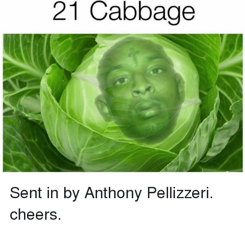 Cheers, Cabbage, and Senting: 21 Cabbage Sent in by Anthony Pellizzeri. cheers.