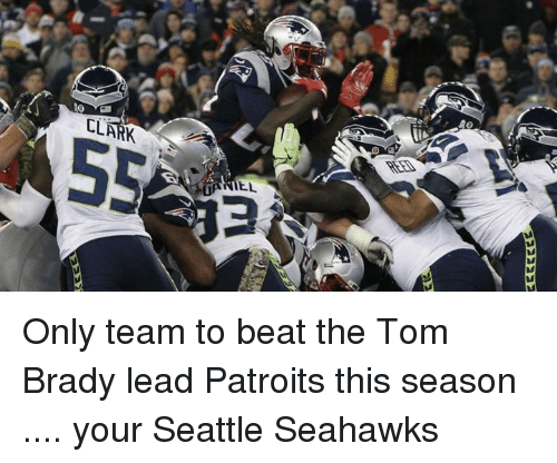 Memes, Seattle Seahawks, and 🤖: 2222222  Em Only team to beat the Tom Brady lead Patroits this season .... your Seattle Seahawks