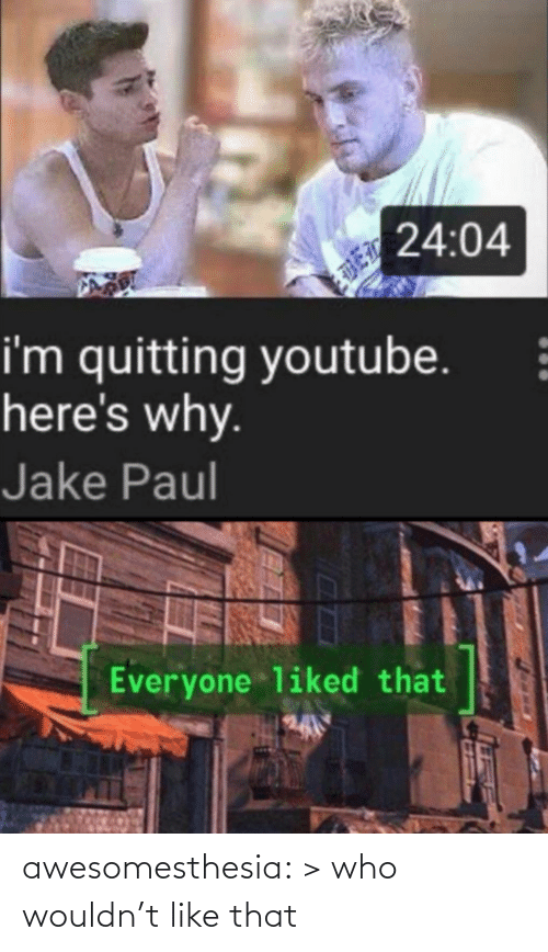 Wouldnt: 24:04  i'm quitting youtube.  here's why.  Jake Paul  Everyone liked that awesomesthesia:  > who wouldn't like that