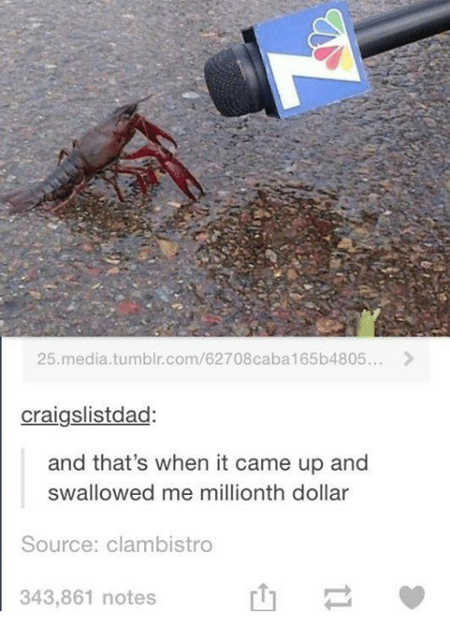 Me Millionth Dollar: 25 me  tumblr.com/62708caba165b4805...  craigslistdad:  and that's when it came up and  swallowed me millionth dollar  Source: clambistro  343,861 notes