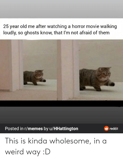 walking: 25 year old me after watching a horror movie walking  loudly, so ghosts know, that I'm not afraid of them  Posted in r/memes by u/HHattington  6 reddit This is kinda wholesome, in a weird way :D