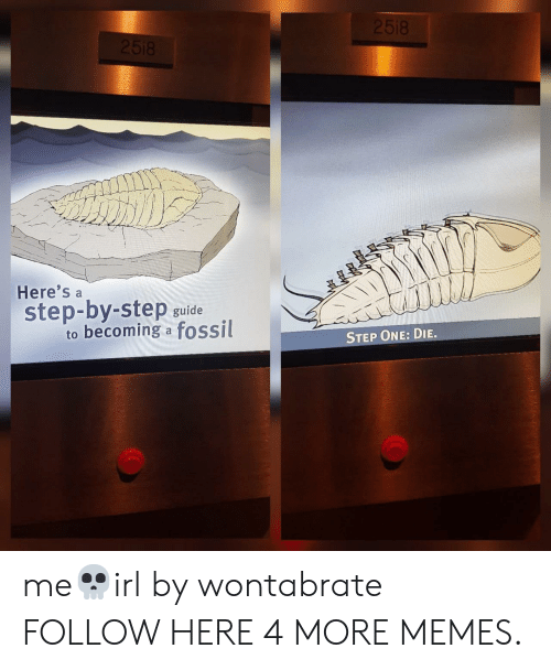 step by step: 2518  2518  Here's  step-by-step  to becoming a fossil  guide  STEP ONE: DIE. me💀irl by wontabrate FOLLOW HERE 4 MORE MEMES.