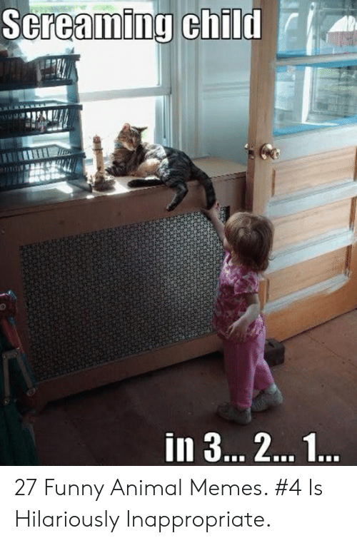 Hilariously Inappropriate: 27 Funny Animal Memes. #4 Is Hilariously Inappropriate.