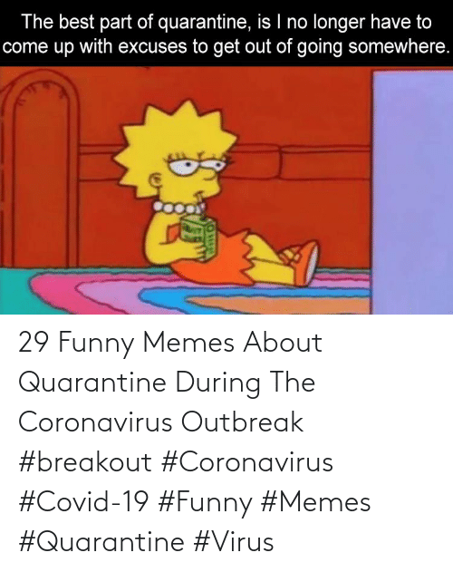 Funny, Memes, and Virus: 29 Funny Memes About Quarantine During The Coronavirus Outbreak  #breakout #Coronavirus #Covid-19 #Funny #Memes #Quarantine #Virus