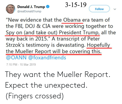 """Donald Trump, Fbi, and Obama: 3-15-19  Donald. Trump  Follow  @realDonaldTrump  """"New evidence that the Obama era team of  the FBI, DOJ & CIA were working together to  Spy on (and take out) President Trump, all the  way back in 2015."""" A transcript of Peter  Strzok's testimony is devastating. Hopefully  the Mueller Report will be covering this.  @OANN @foxandfriends  7:15 PM-15 Mar 2019 They want the Mueller Report. Expect the unexpected. (Fingers crossed)"""