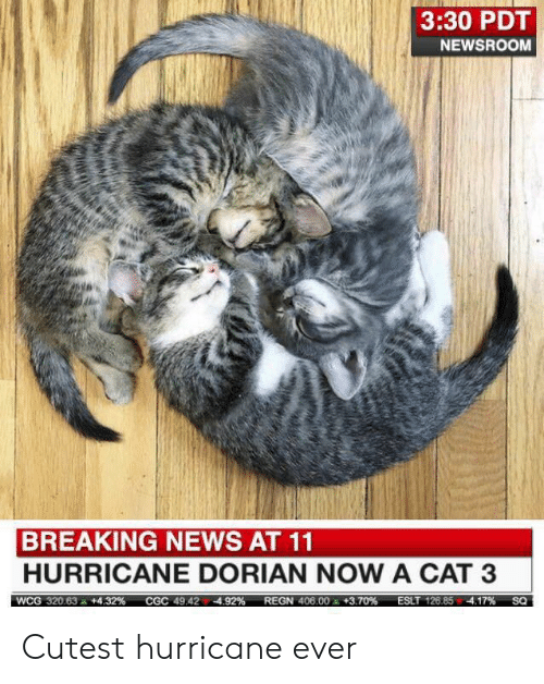Hurricane: 3:30 PDT  NEWSROOM  BREAKING NEWS AT 11  HURRICANE DORIAN NOW A CAT 3  ESLT 126.85 4.17%  WCG 320.63  +4.32 %  REGN 406.00 +3.70 %  CGC 49.424.92%  SQ Cutest hurricane ever