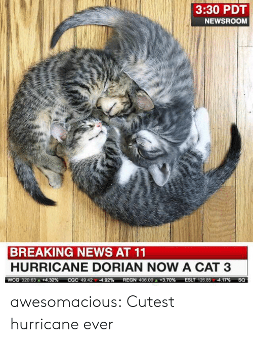Hurricane: 3:30 PDT  NEWSROOM  BREAKING NEWS AT 11  HURRICANE DORIAN NOW A CAT 3  ESLT 126.85 4.17%  WCG 320.63  +4.32 %  REGN 406.00 +3.70 %  CGC 49.424.92%  SQ awesomacious:  Cutest hurricane ever