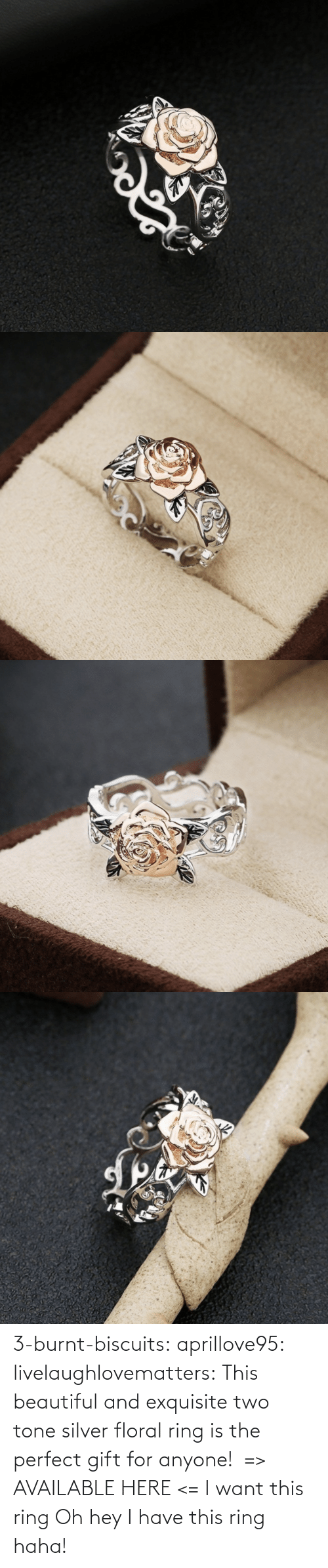The Perfect: 3-burnt-biscuits: aprillove95:  livelaughlovematters:  This beautiful and exquisite two tone silver floral ring is the perfect gift for anyone!  => AVAILABLE HERE <=    I want this ring     Oh hey I have this ring haha!