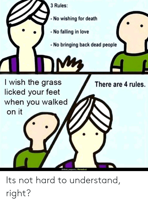 Love, Death, and Back: 3 Rules:  - No wishing for death  - No falling in love  No bringing back dead people  I wish the grass  licked your feet  when you walked  There are 4 rules.  on it  Shitbob_asspants | Memedroid Its not hard to understand, right?