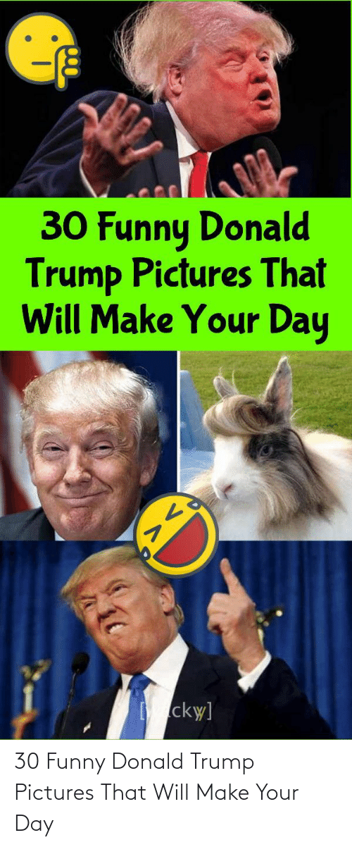 Donald Trump: 30 Funny Donald Trump Pictures That Will Make Your Day