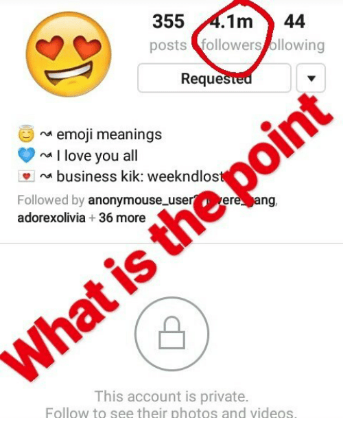 355 1m 44 Posts Followers Ollowing Reque Na Emoji Meanings