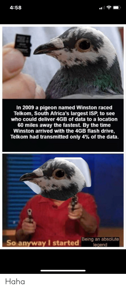 flash: 4:58  In 2009 a pigeon named Winston raced  Telkom, South Africa's largest ISP, to see  who could deliver 4GB of data to a location  60 miles away the fastest. By the time  Winston arrived with the 4GB flash drive,  Telkom had transmitted only 4% of the data.  Being an absolute  legend  So anyway I started Haha