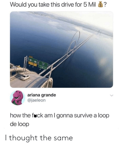 ariana grande: $4  Would you take this drive for 5 Mil  Seeth  New Orteens  ariana grande  @jaeleon  how the fuck amI gonna survive a loop  de loop I thought the same