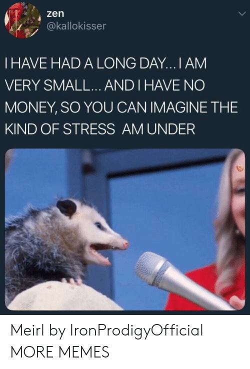 Dank, Memes, and Money: 4 zen  akallokisser  I HAVE HAD A LONG DAY...I AM  VERY SMALL... AND I HAVE NO  MONEY, SO YOU CAN IMAGINE THE  KIND OF STRESS AM UNDER Meirl by IronProdigyOfficial MORE MEMES