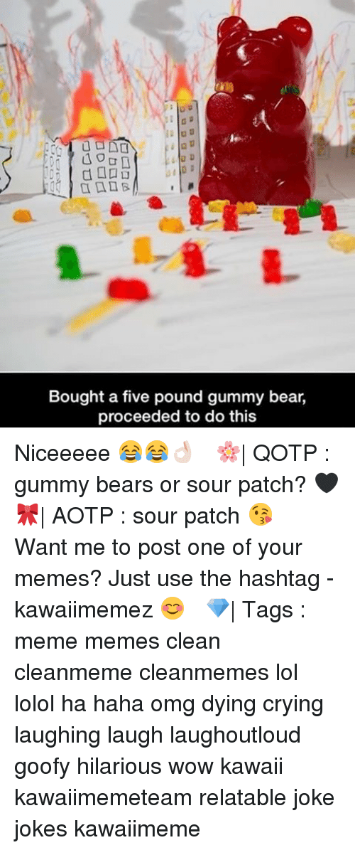 Memes Clean: 40  Bought a five pound gummy bear,  proceeded to do this Niceeeee 😂😂👌🏻 ✿ 🌸| QOTP : gummy bears or sour patch? 🖤 🎀| AOTP : sour patch 😘 ✿ Want me to post one of your memes? Just use the hashtag -kawaiimemez 😊 ✿ 💎| Tags : meme memes clean cleanmeme cleanmemes lol lolol ha haha omg dying crying laughing laugh laughoutloud goofy hilarious wow kawaii kawaiimemeteam relatable joke jokes kawaiimeme