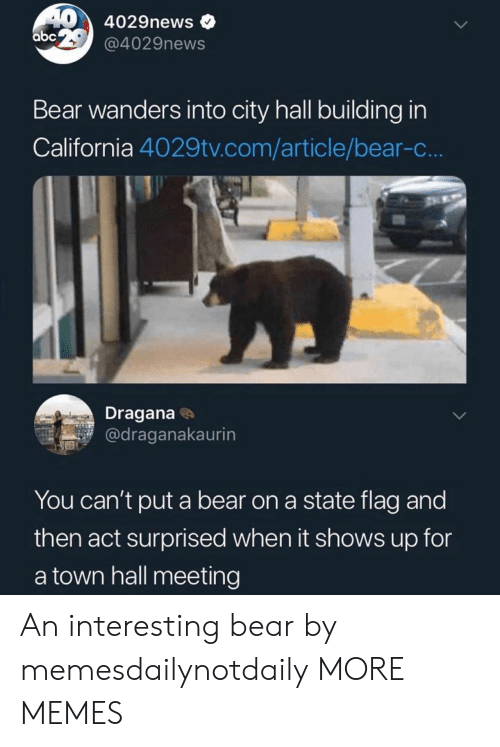 Abc, Dank, and Memes: 404029news  abc  @4029news  Bear wanders into city hall building in  California 4029tv.com/article/bear-c...  Dragana  @draganakaurin  You can't put a bear on a state flag and  then act surprised when it shows up for  a town hall meeting An interesting bear by memesdailynotdaily MORE MEMES