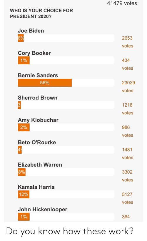 Bernie Sanders, Elizabeth Warren, and Joe Biden: 41479 votes  WHO IS YOUR CHOICE FOR  PRESIDENT 2020?  Joe Biden  6%  2653  votes  Cory Booker  434  0  0  votes  Bernie Sanders  56%  23029  votes  Sherrod Brown  1218  votes  Amy Klobuchar  2%  986  votes  Beto O'Rourke  1481  votes  Elizabeth Warren  8%  3302  votes  Kamala Harris  12%  5127  votes  John Hickenlooper  0  384 Do you know how these work?