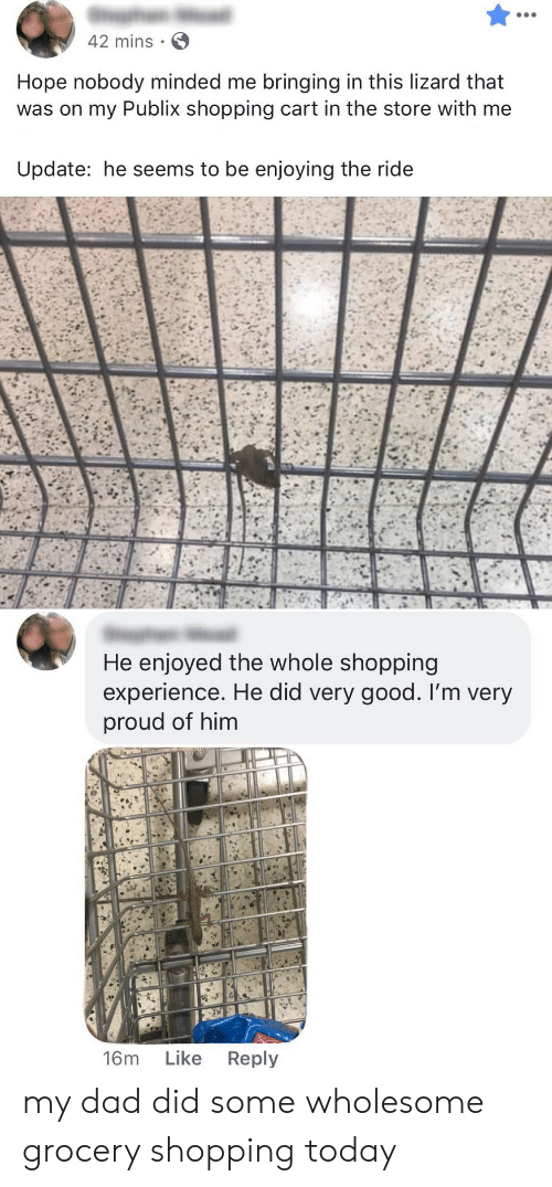 grocery shopping: 42 mins  Hope nobody minded me bringing in this lizard that  was on my Publix shopping cart in the store with me  Update: he seems to be enjoying the ride  He enjoyed the whole shopping  experience. He did very good. I'm very  proud of him  Like  Reply  16m my dad did some wholesome grocery shopping today