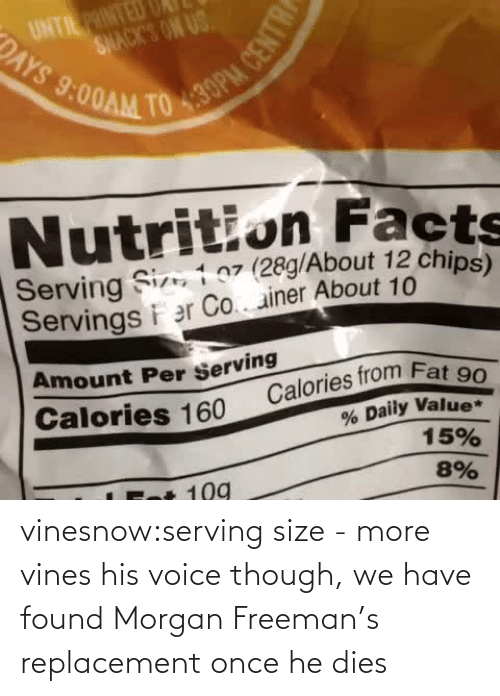 He Dies: 430PM CENTRE  TO  SNACK'S ON US  DAYS  UNTIL PRINTED  9:00AM  Nutrition Facts  Serving Si 1 07 (28g/About 12 chips)  Servings i er Co.. ainer About 10  Amount Per Serving  Calories from Fat 90  % Daily Value*  15%  Calories 160  8%  109 vinesnow:serving size - more vines  his voice though, we have found Morgan Freeman's replacement once he dies