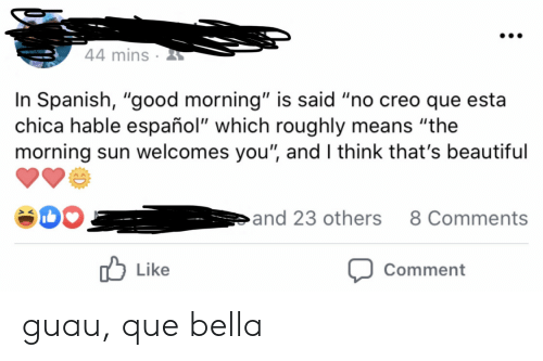 "Good Morning: 44 mins  In Spanish, ""good morning"" is said ""no creo que esta  chica hable español"" which roughly means ""the  morning sun welcomes you"", and I think that's beautiful  and 23 others  8 Comments  Like  Comment guau, que bella"
