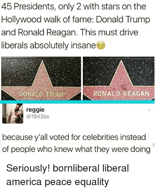 America, Donald Trump, and Memes: 45 Presidents, only 2 with stars on the  Hollywood walk of fame: Donald Trump  and Ronald Reagan. This must drive  liberals absolutely insane  DONALD ERUMP  GAN  reggie  @1942bs  because y'all voted for celebrities instead  of people who knew what they were doing Seriously! bornliberal liberal america peace equality