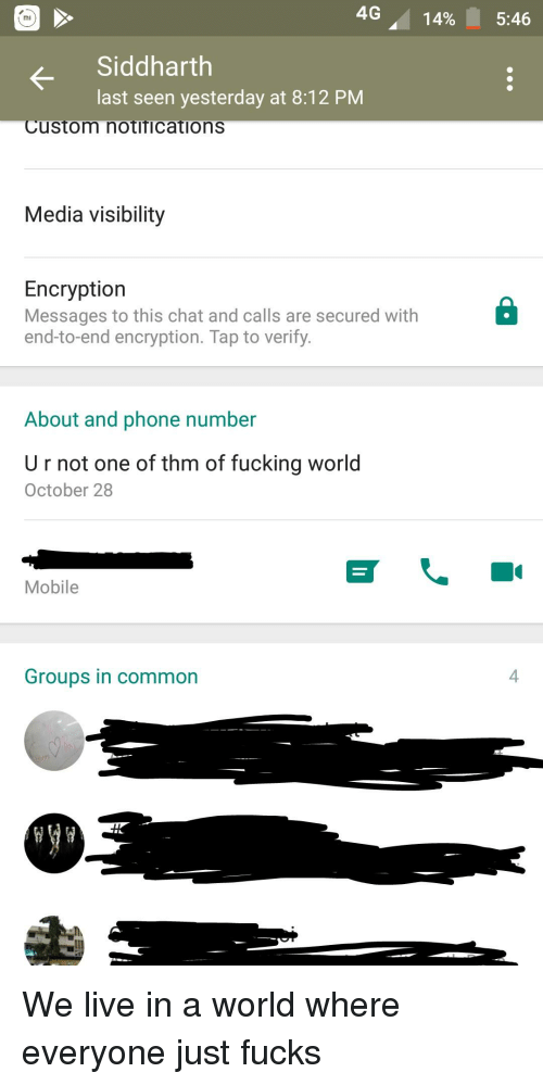 Fucking, Phone, and Chat: 4G 14%  5:46  Siddharth  last seen yesterday at 8:12 PM  Custom notifications  Media visibility  Encryption  Messages to this chat and calls are secured with  end-to-end encryption. Tap to verify.  About and phone number  U r not one of thm of fucking world  October 28  Mobile  Groups in common  4