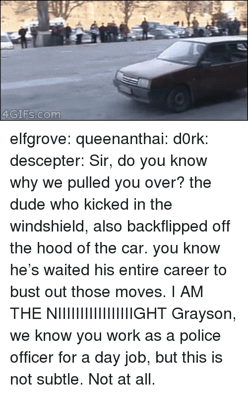 swat: 4GIFs.com elfgrove:  queenanthai:  d0rk:  descepter:  Sir, do you know why we pulled you over?  the dude who kicked in the windshield, also backflipped off the hood of the car. you know he's waited his entire career to bust out those moves.  I AM THE NIIIIIIIIIIIIIIIIIGHT  Grayson, we know you work as a police officer for a day job, but this is not subtle. Not at all.