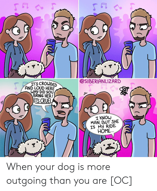 Home, Her, and Dog: 5门  5门  @SIBERIANLIZARD  ITS CROWDED  AND LOUD HERE  BRING HER!  ITS CRUEL  I KNOW  MAN, BUT SHE  IS My RIDE  HOME... When your dog is more outgoing than you are [OC]