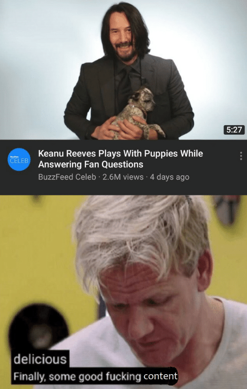 Fucking, Puppies, and Buzzfeed: 5:27  Keanu Reeves Plays With Puppies While  Answering Fan Questions  CELEB  BuzzFeed Celeb 2.6M views 4 days ago  delicious  Finally, some good fucking content