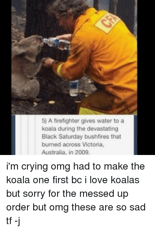 Koalaing: 5) A firefighter gives water to a  koala during the devastating  Black Saturday bushfires that  burned across Victoria.  Australia, in 2009. i'm crying omg had to make the koala one first bc i love koalas but sorry for the messed up order but omg these are so sad tf -j