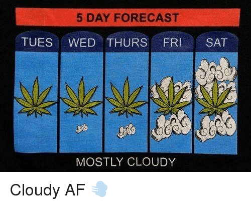 tues: 5 DAY FORECAST  TUES WED THURS FRI SAT  MOSTLY CLOUDY Cloudy AF 💨