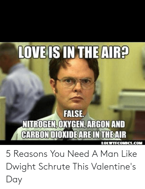 Schrute: 5 Reasons You Need A Man Like Dwight Schrute This Valentine's Day