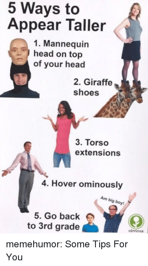 extensions: 5 Ways to  Appear Taller  1. Mannequin  head on top  of your head  2. Giraffe  shoes  3. Torso  extensions  4. Hover ominously  Am big boy  5. Go back  to 3rd grade  obviouS memehumor:  Some Tips For You