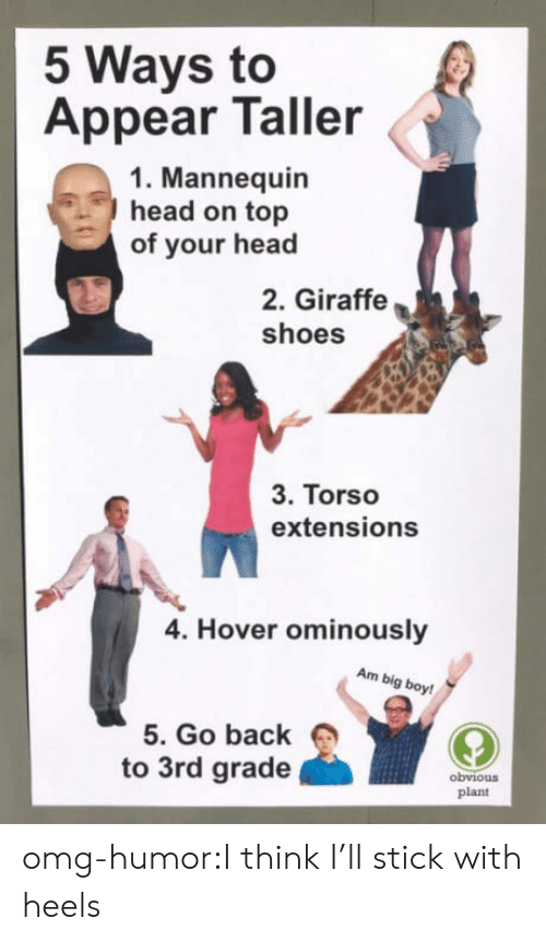 Head, Omg, and Shoes: 5 Ways to  Appear Taller  1. Mannequin  head on top  of your head  2. Giraffe  shoes  3. Torso  extensions  4. Hover ominously  Am big boy!  5. Go back  to 3rd grade  obviouS  plant omg-humor:I think I'll stick with heels