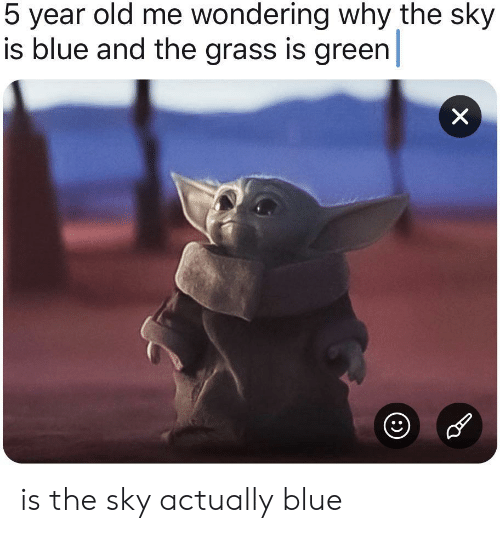 wondering: 5 year old me wondering why the sky  is blue and the grass is green  X is the sky actually blue