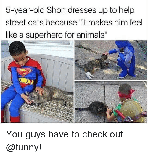 """Animals, Cats, and Funny: 5-year-old Shon dresses up to help  street cats because """"it makes him feel  like a superhero for animals"""" You guys have to check out @funny!"""