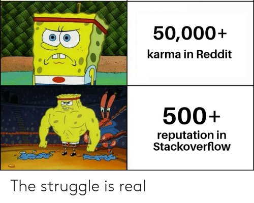 Reddit, Struggle, and The Struggle Is Real: 50,000+  karma in Reddit  500+  reputation in  Stackoverflow The struggle is real