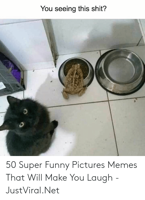 funny pictures: 50 Super Funny Pictures Memes That Will Make You Laugh - JustViral.Net