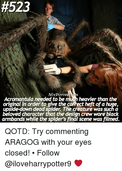 Final Scene:  #523  MYP  Acromantula needed to be mihn heavier than the  original in order to give the correct heft ofa huge,  upside-down dead spider The creature was such a  beloved character that the design crew wore black  armbands while the spider's final scene was filmed. QOTD: Try commenting ARAGOG with your eyes closed! • Follow @iloveharrypotter9 ❤️
