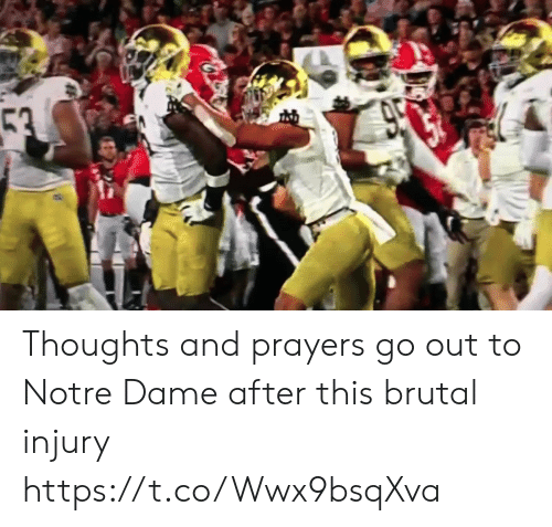 Sports, Notre Dame, and Dame: 53  950 Thoughts and prayers go out to Notre Dame after this brutal injury https://t.co/Wwx9bsqXva