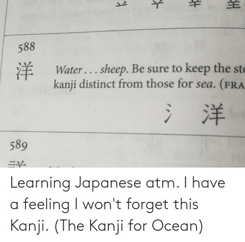 sto: 588  洋  #  Water... sheep. Be sure to keep the sto  kanji distinct from those for sea. (FRA  氵洋  589 Learning Japanese atm. I have a feeling I won't forget this Kanji. (The Kanji for Ocean)